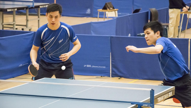 2016-17 乒乓球比賽